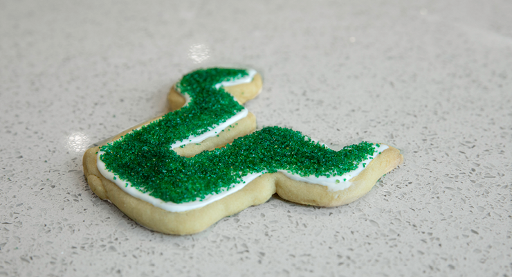 Close-up photo of a finished USF Bull U cookie