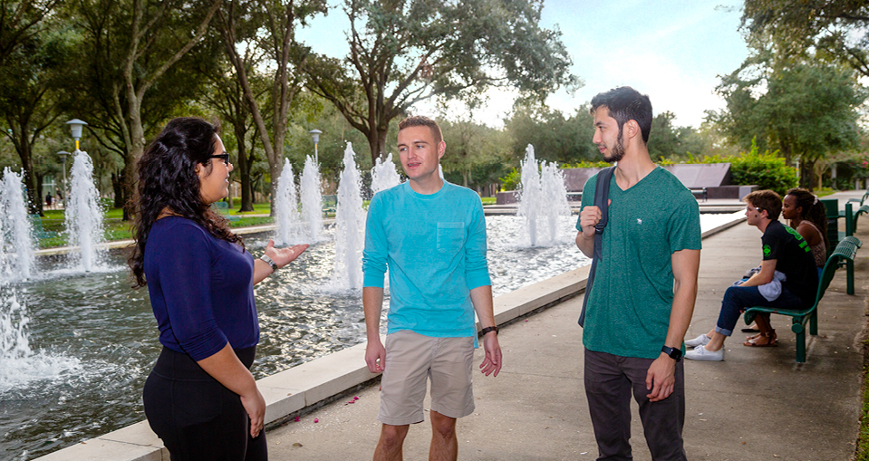 USF students talk in front of the MLK Plaza Reflection Pool