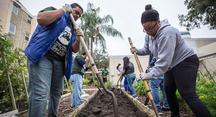 USF students at a service project