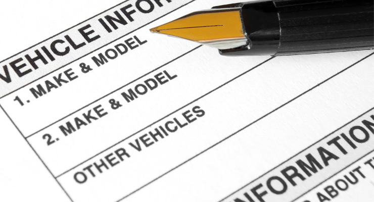 Vehicle information and registration document example.