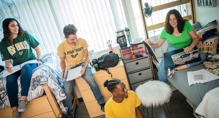 Four USF students studying in a residence hall room