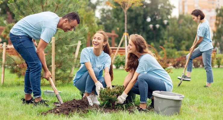 A group of college students planting trees in the park
