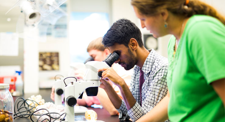 USF students using research facilities on campus