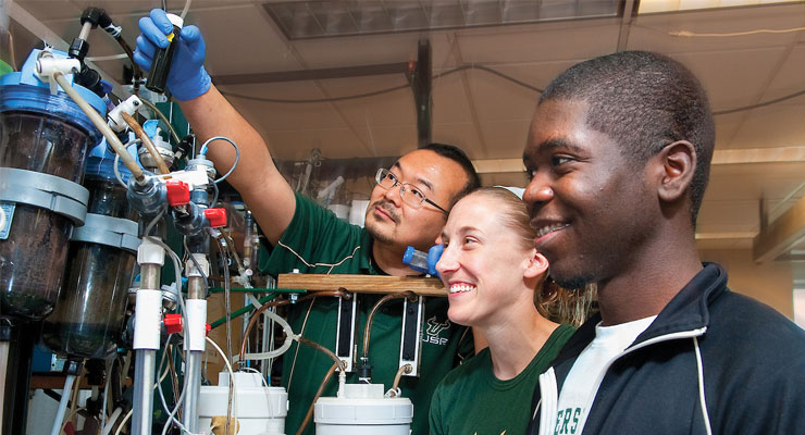 USF students participating in research at USF
