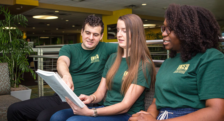 USF Honors College students collaborating on a project.