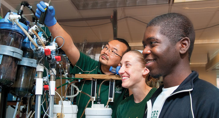 Two USF undergraduate students work with their professor on a research project