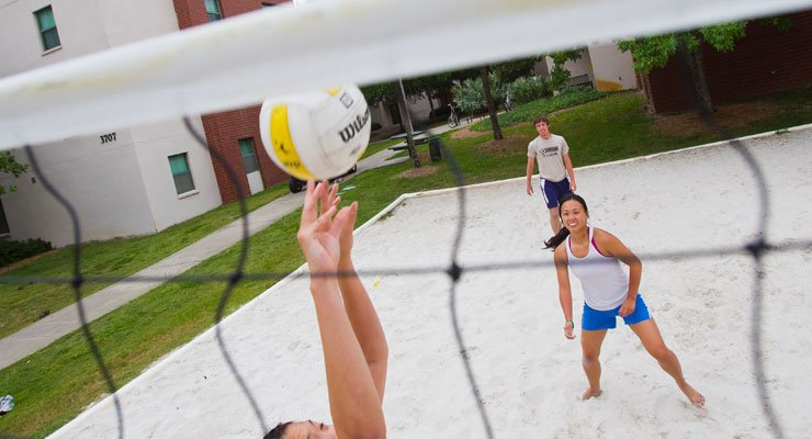 USF Students playing a game of volleyball.