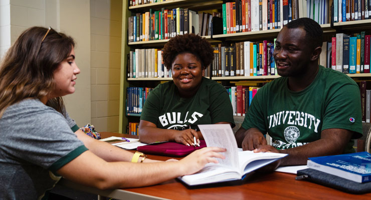 Students at USF work with a tutor to improve their grades