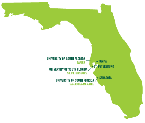 Usf System Overview University Of South Florida