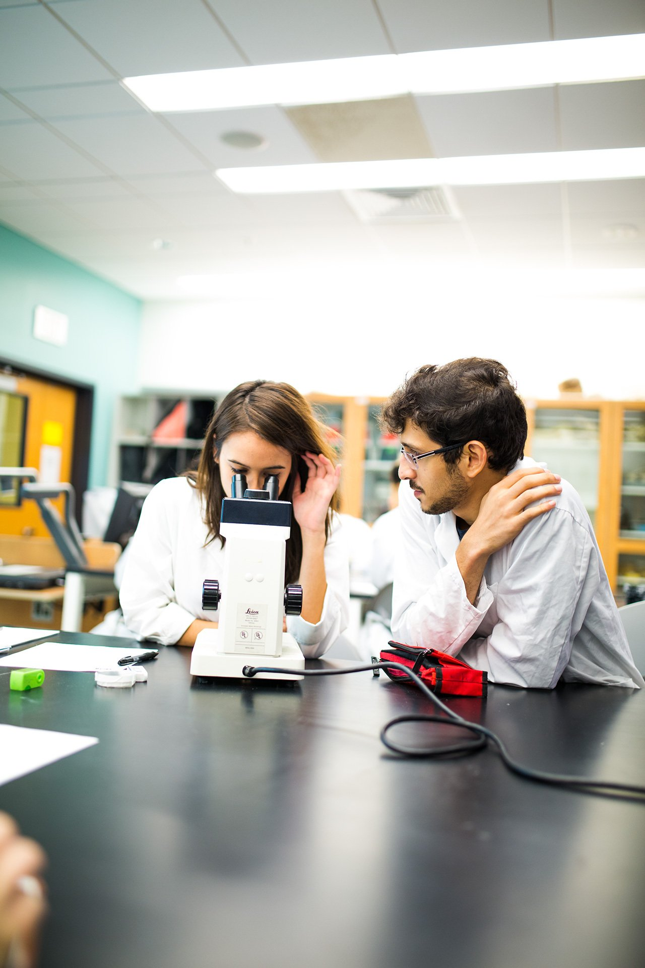 Two USF students conducting research in class.