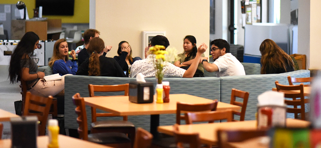 USF students sitting together at a USF Sarasota dining hall talking.