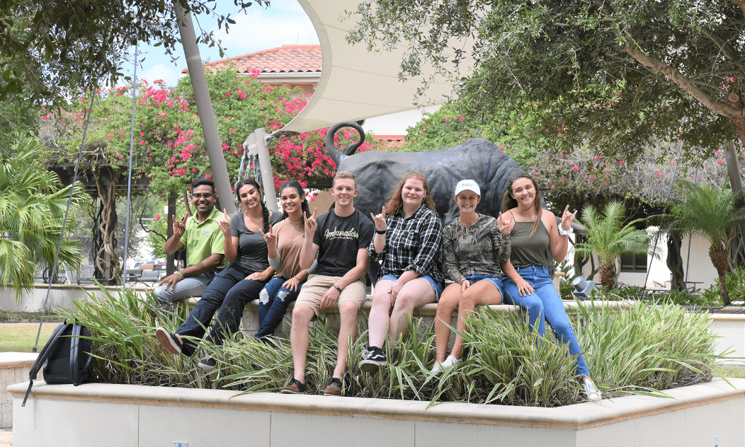 USF students sitting together holding up the bulls sign in front of the bull at USF.