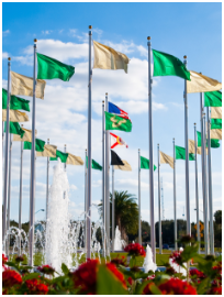 United States, Florida, and USF flags on USF Tampa campus.