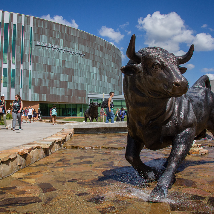 USF Bull in front of the Marshall Student Center at USF's Tampa.