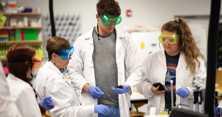 USF Sarasota-Manatee students conducting an experiment in class.