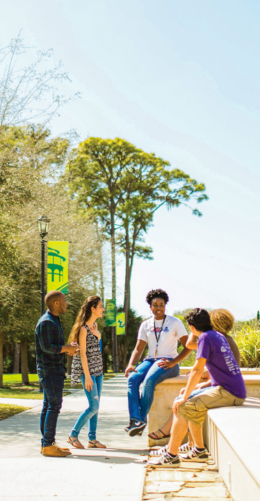 USF students hanging out outside on the Sarasota-Manatee campus.