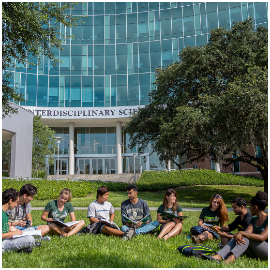 Students sitting outside on campus at USF Tampa studying from textbooks.